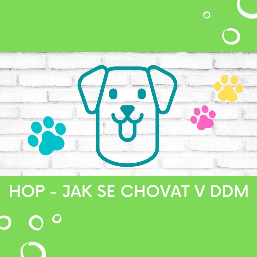 HOP - Hlídací pejsek DDM Choceň